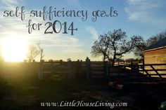 Making self sufficiency goals and staying accountable. Plus a free printable to list your goals on!