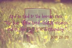 """And he said to the human race,  """"The fear of the Lord—that is wisdom, and to shun evil is understanding.""""        [Job 28:28]"""