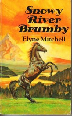 Snowy River Brumby Horse Movies, Horse Books, Dog Books, Animal Magazines, Animal Books, Horse Story, Copper Dragon, Black Stallion, Riding Lessons