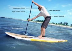 A beginners introduction on how to stand up paddle board. Everything you need to know to get out and have fun on the water.