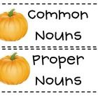 Students can sort common and proper nouns. You can use this as a group activity or have students sort the nouns and then use their recording sheet....
