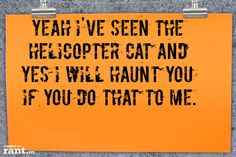 Yeah I've seen the helicopter cat and yes I will haunt you if you do that to me.