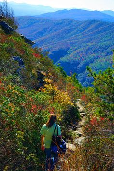 Take a hike in the North Carolina mountains. Trail to Table Rock in Linville Gorge
