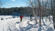 If you're looking for a cross-country ski trail near you in the Adirondacks, then take a look at our list. We've organized some popular cross-country ski trails by region in the Adirondacks. Acadia National Park, National Parks, Maine, Lose Tummy Fat, Cross Country Skiing, Cheap Travel, Vacation Trips, Land Scape, Free Photos