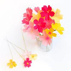 Kit fleurs de cerisier DIY - Adeline Klam