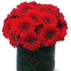 rakhi flowers noida