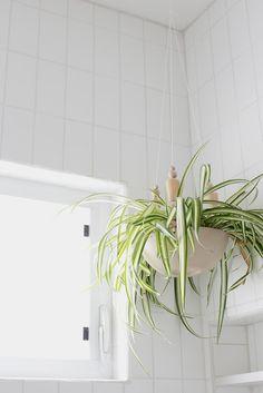 Naifandtastic:Decoración, craft, hecho a mano, restauracion muebles, casas pequeñas, boda: DIY: Una planta colgante en el baño