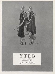 Yteb 1925 Fashion Dresses, Greyhound Sighthound, Fashion Illustration
