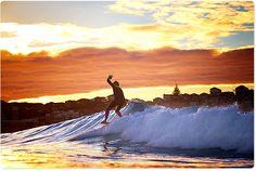 sunrise surfer at Bondi Beach - Sydney, NSW