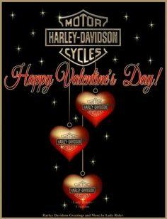 Harley Davidson Shop, Harley Davidson Quotes, Harley Davidson Pictures, Harley Davidson Wallpaper, Motor Harley Davidson Cycles, Harley Davidson T Shirts, Harley Davidson Touring, Harley Davidson Motorcycles, Indian Motorcycles