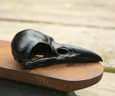 Urethane plastic cast crow skull replica, via Etsy
