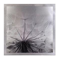 Dandelion Mounted Aluminum Art Print | Kirkland's