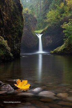 Eagle Creek, Oregon Photographer Miles Mogen.