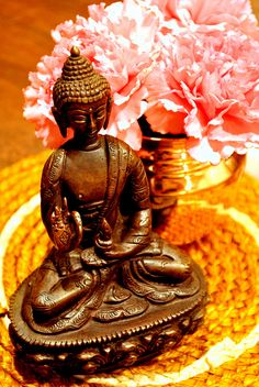 learn more about Buddhism and meditation