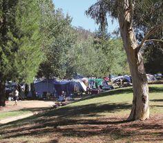 Photo courtesy of Mark Will // The Cotter Campground is the most highly serviced bushland camping area in the ACT