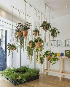 Vasos suspensos são tendência forte no décor. Aqui, eles aparecem pendurados por…
