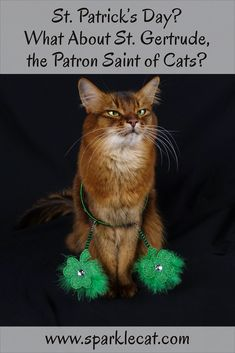 Instead of celebrating Saint Patrick's Day, I would much prefer recognizing Saint Gertrude, the patron saint of cats.