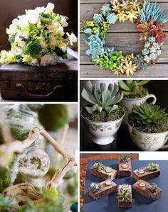 Succulent Wedding Decoration