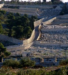 This is the Mount of Olives taken from the Temple Mount. The cemetery goes back to the time of Christ. Jerusalem, Israel.