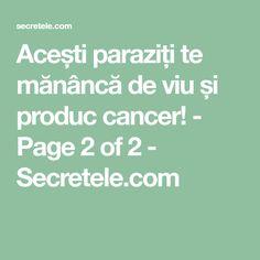 Acești paraziți te mănâncă de viu și produc cancer! - Page 2 of 2 - Secretele.com Good To Know, Health Fitness, Cancer, Health And Fitness, Fitness