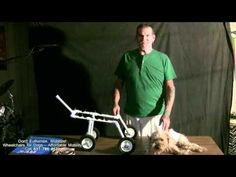 Introduction to building your own doggie wheelchair - YouTube