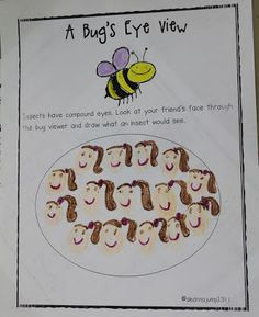 Mrs Jump's class: Compound Eyes anyone? Insect fun and FREEBIE!