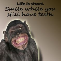 Life is short so smile while you still have teeth.