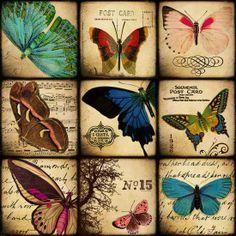 Items similar to Scrabble Tile Images of Butterflies from vintage postcards, illustrations Digital Collage on Etsy Vintage Labels, Vintage Ephemera, Vintage Cards, Vintage Paper, Vintage Postcards, Vintage Butterfly, Butterfly Art, Butterfly Images, Etiquette Vintage