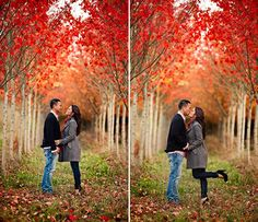 Diggin' the tree rows, not gonna lie - by arlene chambers photography