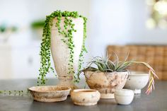 Get creative with greenery   http://lanaloustyle.com/2014/07/get-creative-with-greenery.html