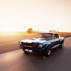 """500px / Photo """"1965 Shelby GT350SR"""" by James Evins"""