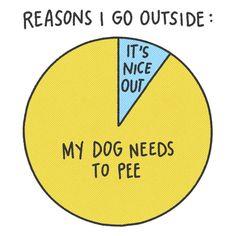 Reasons I go outside...