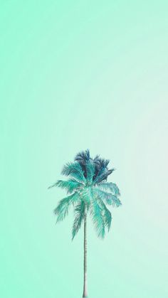 Wall paper phone pastel mint green 36 Ideas for 2019 Screen Wallpaper, Cool Wallpaper, Wallpaper Backgrounds, Aztec Wallpaper, Iphone Backgrounds, Iphone Wallpapers, Disney Wallpaper, Galaxy Wallpaper, Mint Green Wallpaper Iphone