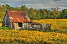 Barn in Fall | Flickr - Photo Sharing!