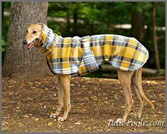 Warm & Wooly Greyhound Coat