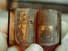 aberdeen bestiary Medieval Illuminated book of animalshttp://evminiatures.blogspot.com