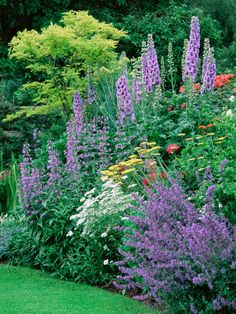 Take the guesswork out of dividing perennials by learning the basics.