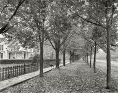 1899-Autumn in Macomb County, Gratiot Ave. & Church St.