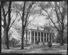 """[""""Donleith,"""" A Greek Revival House with Ionic Capitals, Natchez, Mississippi] Southern Plantation Homes, Southern Plantations, Abandoned Plantations, Natchez Mississippi, Gothic Revival Architecture, Louisiana History, Abandoned Houses, Abandoned Places, Old Mansions"""
