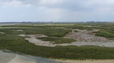 The salt marshes of Guerande in Brittany, France