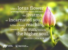 122 Best Choa Kok Suis Quotes Images Healing Awakening Spiritual