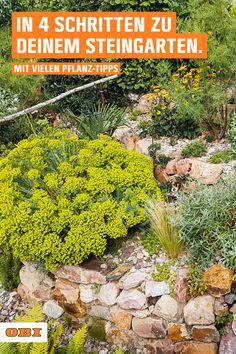 Gardening For Beginners, Gardening Tips, Easy Garden, Home And Garden, Outside Fall Decorations, Living In Italy, Dream Garden, Garden Paths, Beautiful Gardens