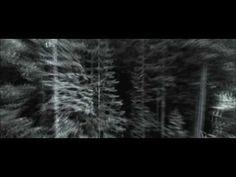 Catherine Hardwicke's Bella's Lullaby Remix Music Video  http://www.youtube.com/watch?v=WEGNWMVxU0s