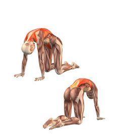 Interesting Reasons to Become a Yoga Teacher Yin Yoga, Kundalini Yoga, Namaste Yoga, Yoga Meditation, Yoga Fitness, Fitness Workouts, Yoga Pilates, Yoga Moves, Yoga Muscles