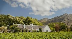 From for 2 nights: Enjoy a stay at the luxurious Owners Cottage at Grande Provence Wine Estate in Franschhoek. The price includes guided transfers, porterage, breakfast, wine tasting, cellar tours and a whole lot more! Provence, Africa Craft, South African Wine, Romantic Honeymoon, Luxury Accommodation, Mountain View, Wine Country, Luxury Travel, Lush