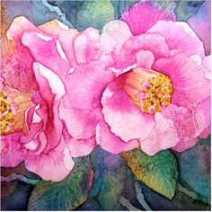 Camelia 2, watercolour by Amanda Spencer