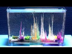 This time lapse photography shows the growth of Magic Rocks, which are metal salts that resemble small rocks that grow into dainty towers when placed in a sodium silicate solution. A photo was taken once a minute for 12 hours. Warmer water produces quick-growing thin shapes, but may also result in bubbles forming on the container. Cooler solutio...
