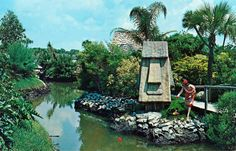 Tiki Gardens, Florida  Wow!  We use to go there all the time when I was a kid!