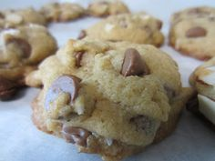 Little Mommy, Big Appetite: Coconut Chocolate Chip Macadamia Nut Cookies