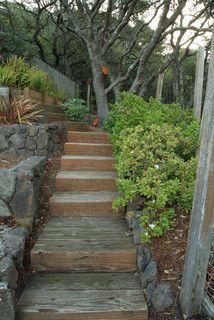 Hillside Garden - modern - landscape - by Shades Of Green Landscape Architecture